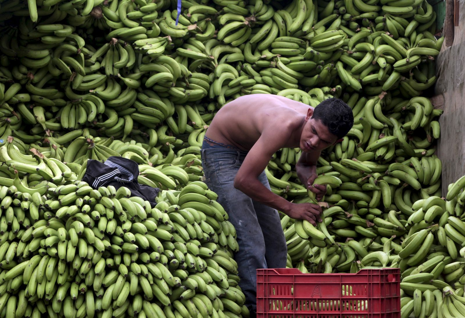 A boy sells bananas at the Oriental Market in Managua