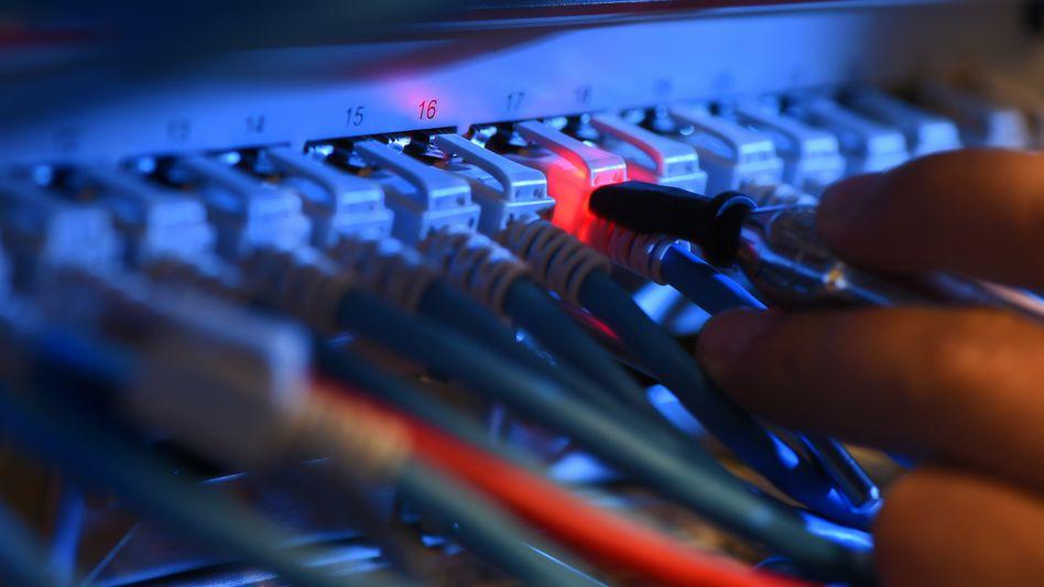 Ein Techniker überprüft Netzwerkkabel. Die Störung der Telekom hatte aber nichts mit einem falsch verbundenen Kabel zu tun.