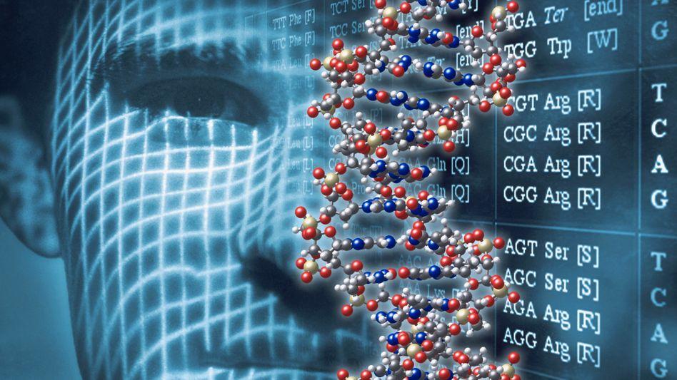 Menschliches Erbgut: Über Gentransfer geben Organismen Fähigkeiten an andere Lebewesen weiter
