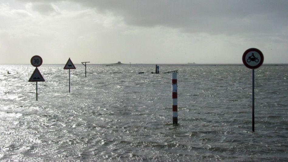 Deich im Landkreis Friesland