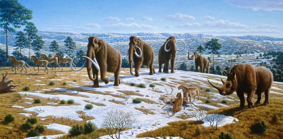 Mammuts (grafische Darstellung): Verhängnisvolles Klima