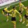 Sancho schießt den BVB im Topspiel gegen Leipzig zum Sieg