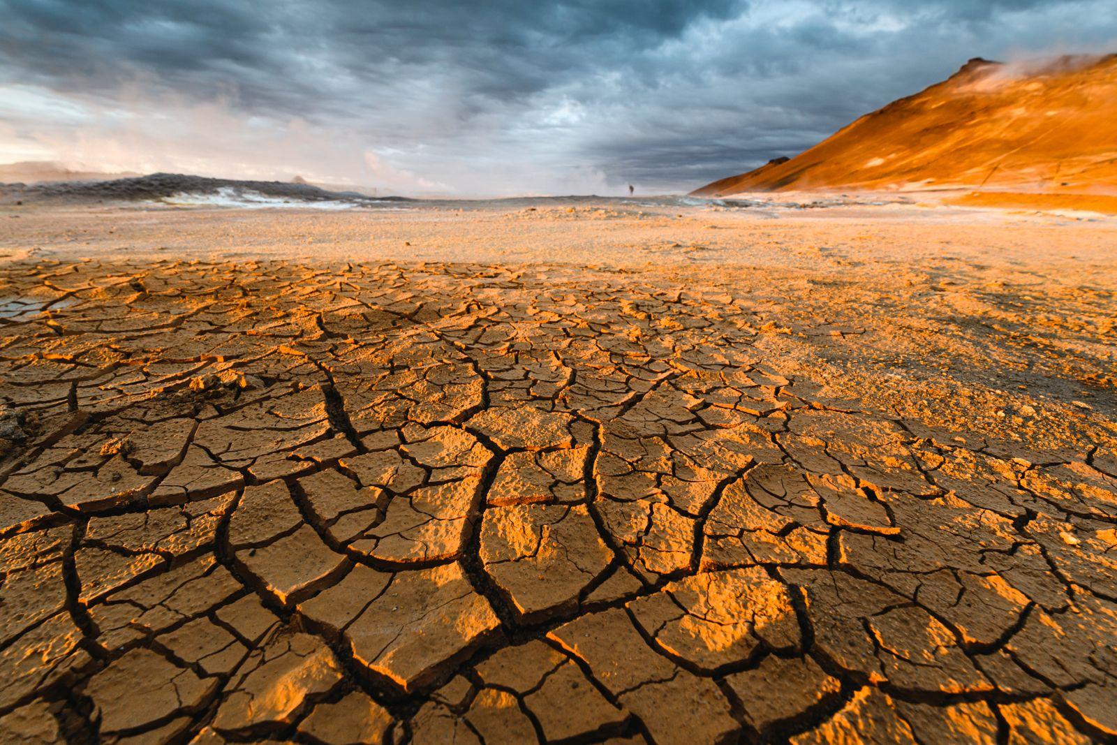 Textured cracked mud landscape, Iceland