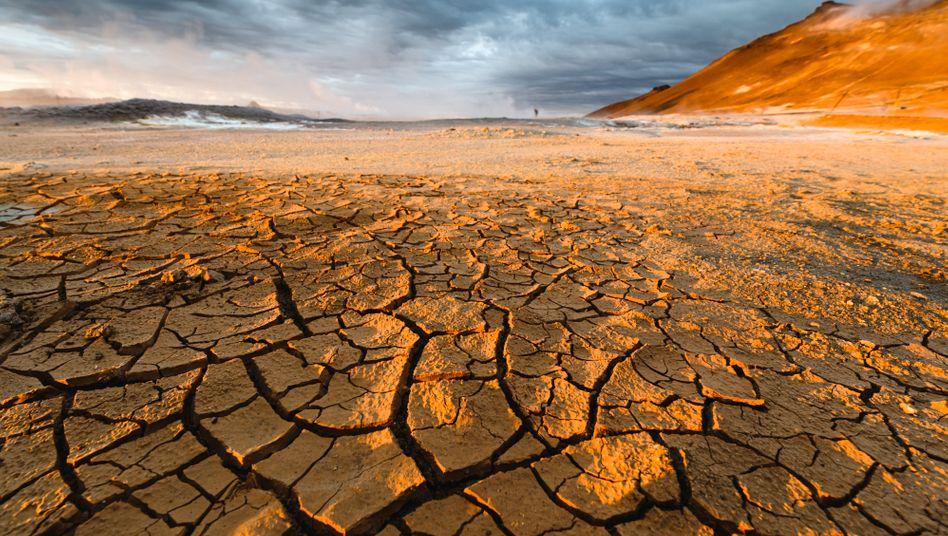 Um die Klimakatastrophe aufzuhalten, brauchen wir Willen – und Geld