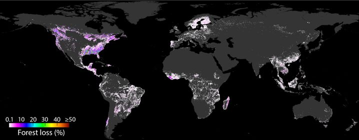 Die Karte zeigt den kumulativen räumlichen Entwaldungsprozess von 2001 bis 2015 durch die USA. Der Pixelwert ist der Prozentsatz der Abholzung durch das Zielverbraucherland