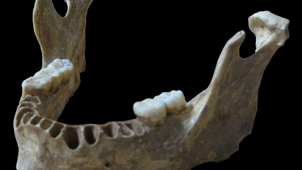 Mensch-Neandertaler: Techtelmechtel im Pleistozän