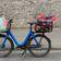 Das neue Hollandrad