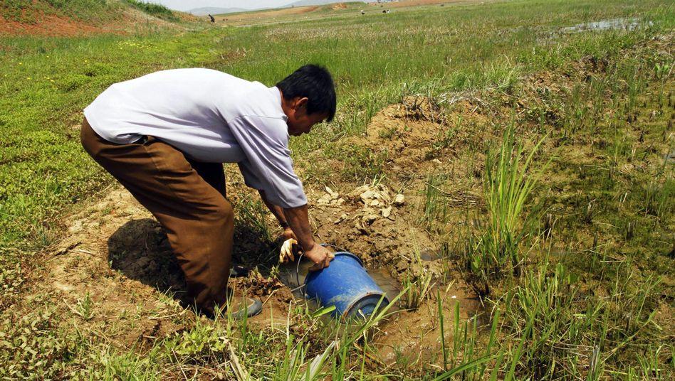 Landwirt in Nordkorea: Laut Uno keine Anzeichen für positive Veränderungen