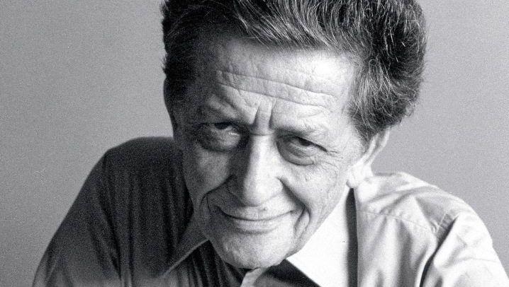 Autor D'Arrigo um 1985