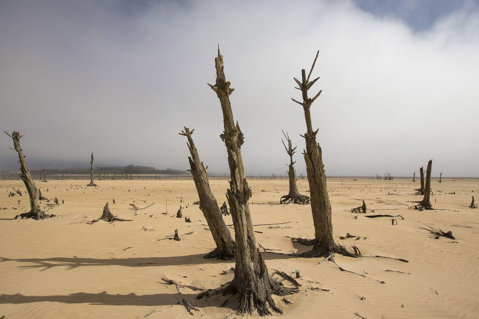 Trockenheit in Kapstadt