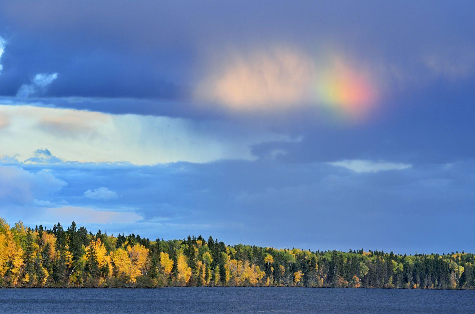 EINMALIGE VERWENDUNG Kanada / Nationalparks / Prince Albert National Park