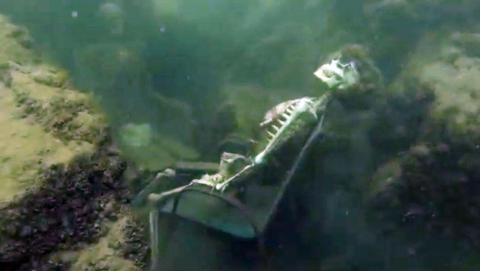 """Entspannte """"Tea-Party"""" unter Wasser: Die Skelette aus dem Colorado River"""