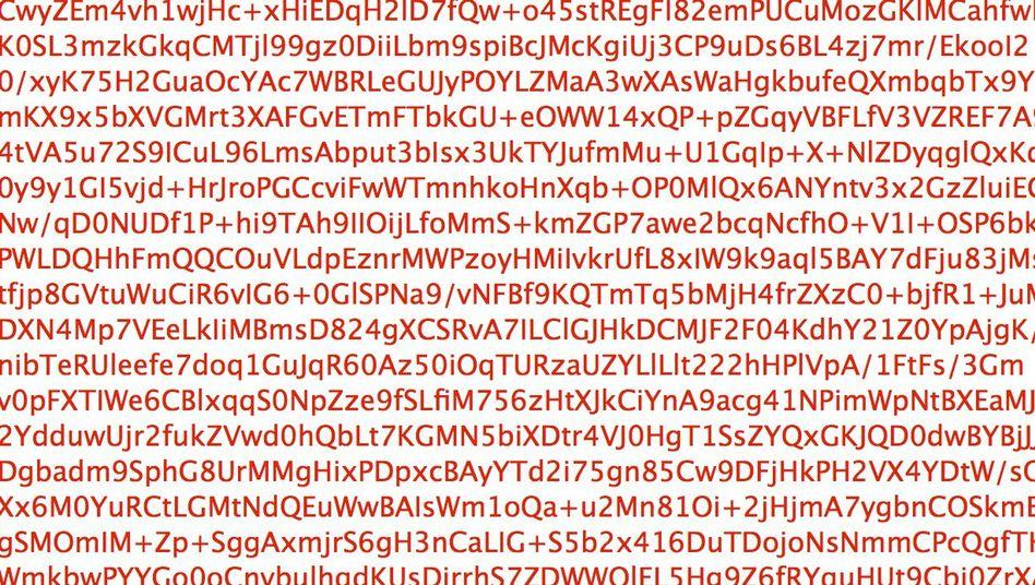 """Verschlüsselte E-Mail: Bundesregierung nennt Enthüllungen """"völlig unbewiesene Behauptungen"""""""