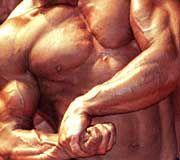 Muskelwahn: Auch Anabolika sind gefährliche Drogen