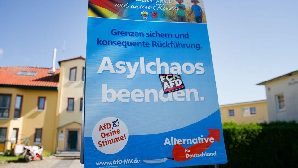 AfD-Wahlplakat auf Usedom