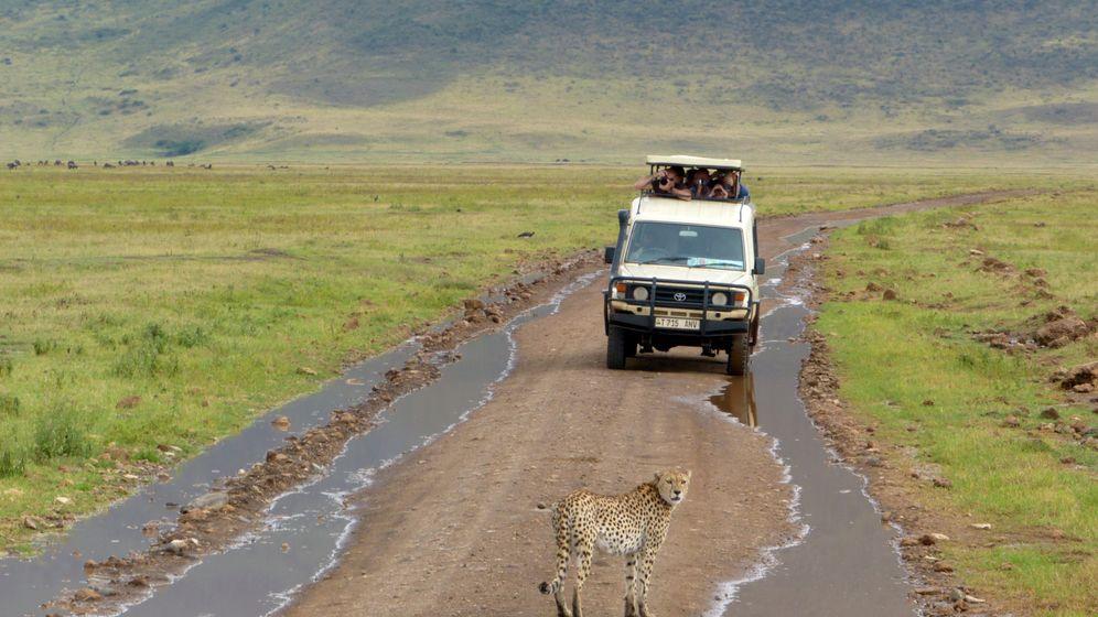 Tansania: Safari am Krater