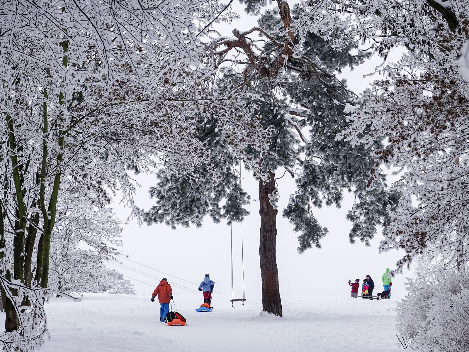 Winterwetter - Sachsen