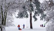 Der Winter zeigt sich von seiner schönsten Seite