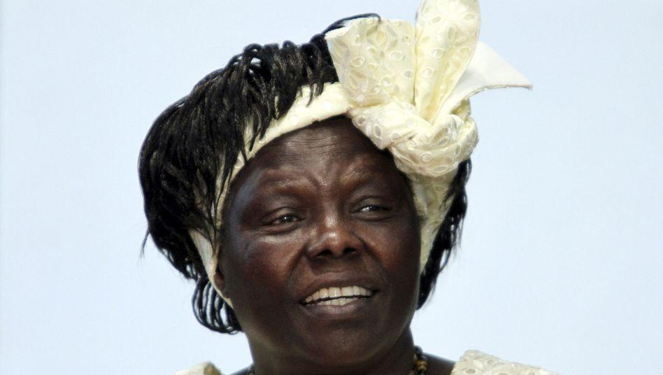 Wangari Maathai: Sie war die erste afrikanische Nobelpreisträgerin