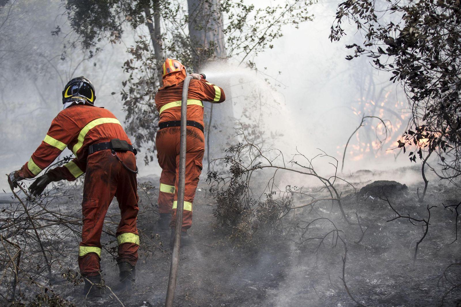 Waldbrände in Italien