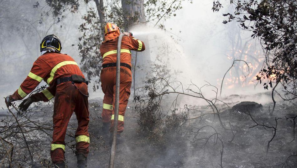 Feuerwehrleute bei einem Waldbrand nahe Rom (Symbolbild)