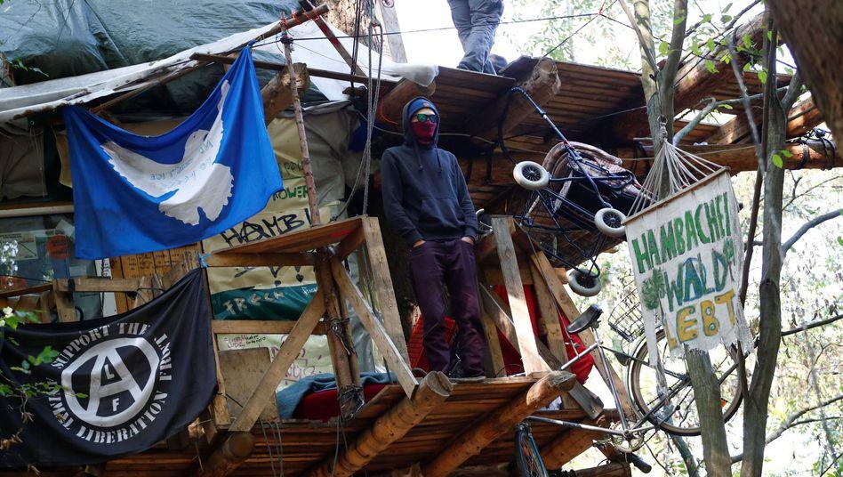 Aktivist auf Baumhaus im Hambacher Forst
