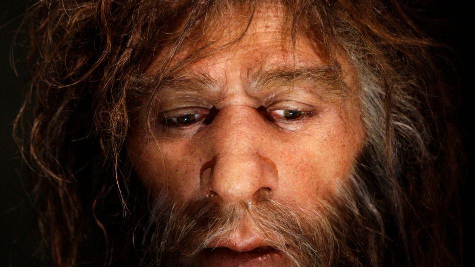 Künstlerische Nachbildung eines Neandertalers in kroatischem Museum (Archivbild)
