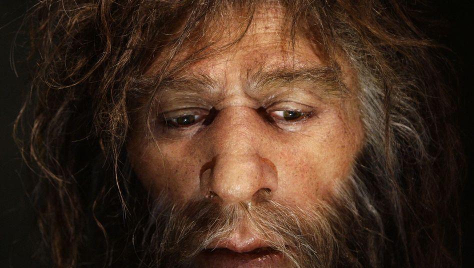 Neandertaler-Nachbildung: Wieviel von ihm steckt in heutigen Europäern?