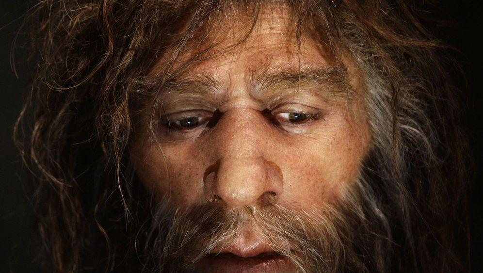 Blass, blond, blauäugig: Der Neandertaler im modernen Menschen