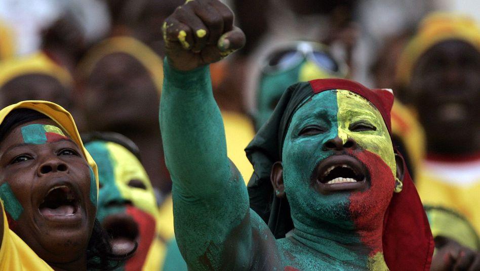 Fans aus Benin (Archiv, Afrika-Cup 2008)