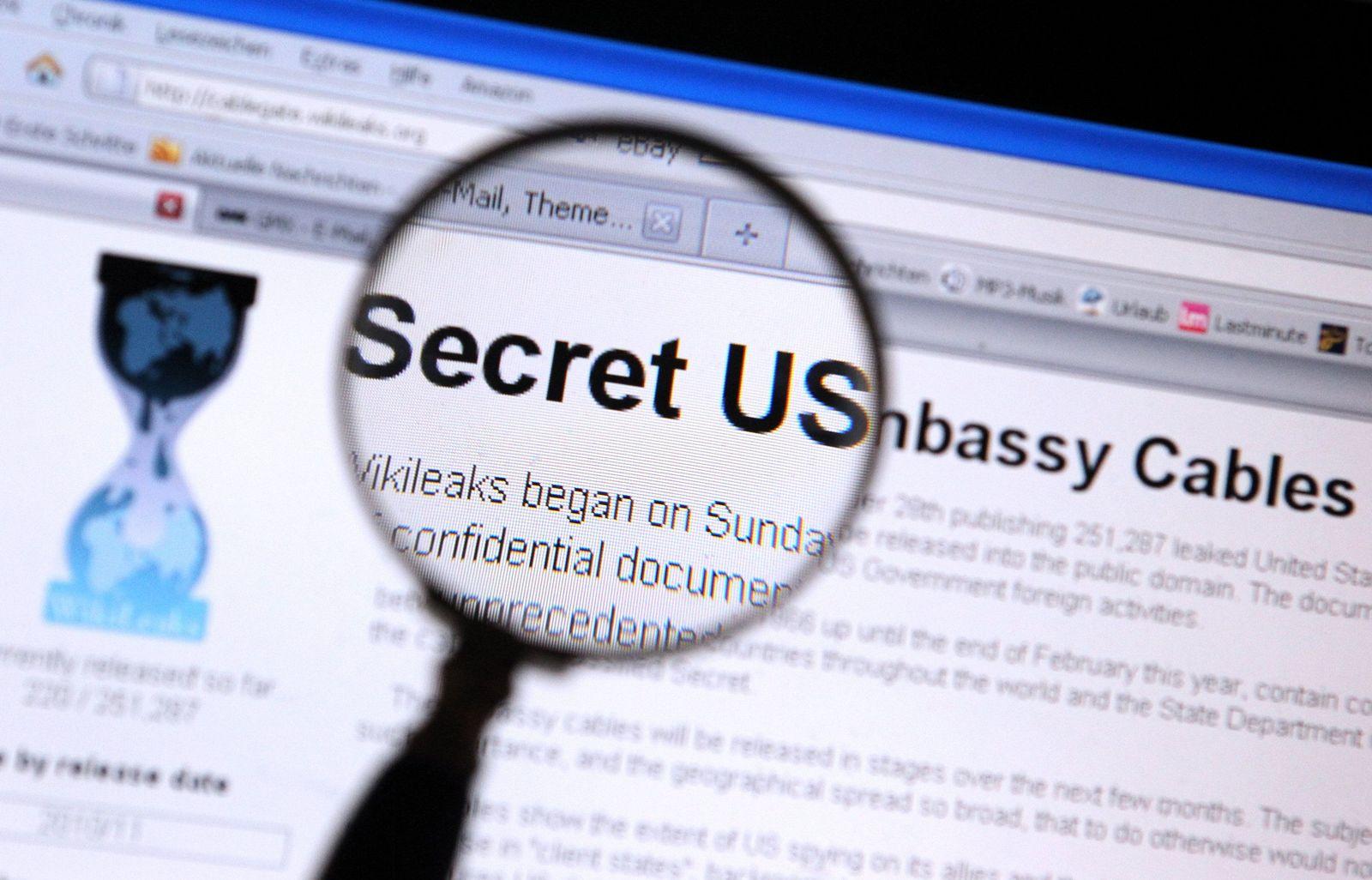 Wikileaks / Internetseite