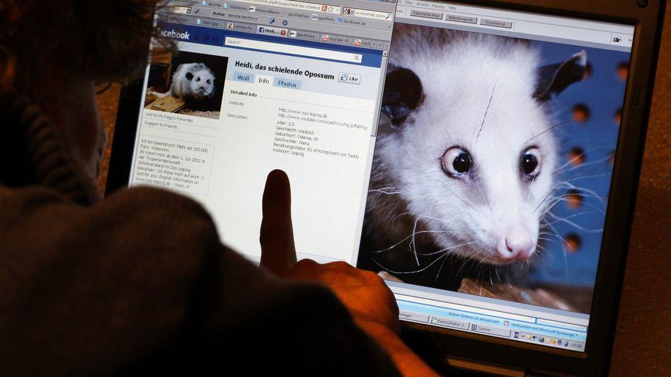 Facebook: Anwender sollen besser kontrollieren können, was mit ihren Adressdaten passiert