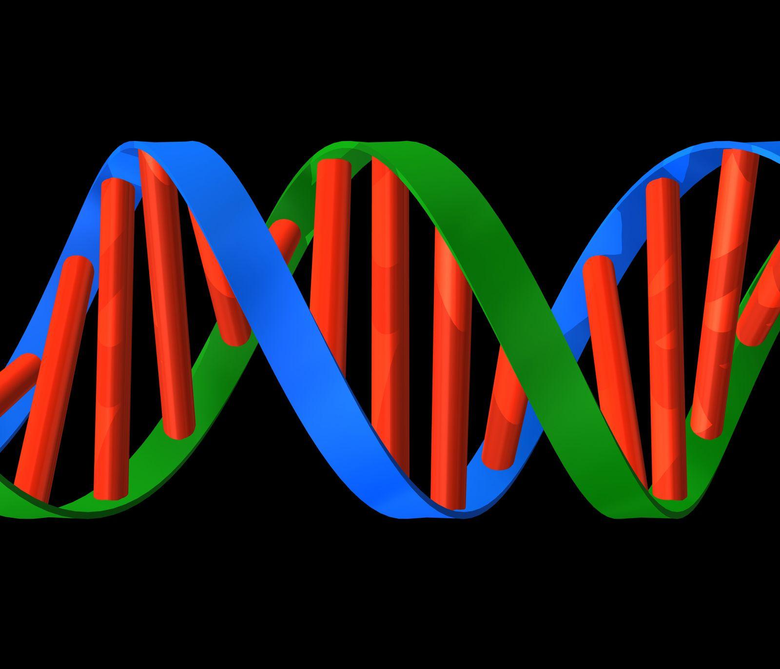 NICHT MEHR VERWENDEN! - DNA Molekül