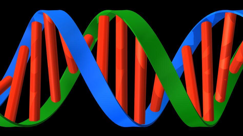 DNA-Doppelhelix: US-Gentest-Firma analysiert das Erbgut von Kunden auf erblich bedingte Erkrankungen