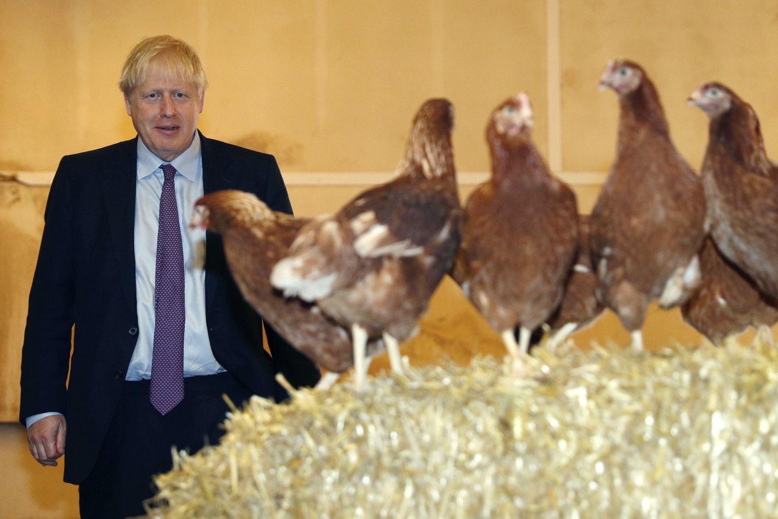 Boris Johnson / Wales