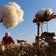 China zwingt offenbar fast 600.000 Uiguren zur Arbeit auf Baumwollfeldern