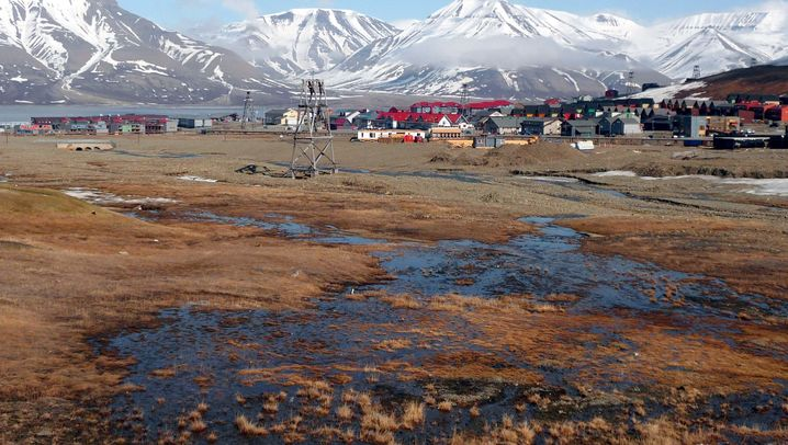 Spitzbergen: Wo sich Fuchs und Schneehuhn gute Nacht sagen