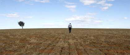 Landwirt (in Australien): Die Vermeidung der schlimmsten Folgen des Klimawandels kostet - aber die Investition lohnt sich