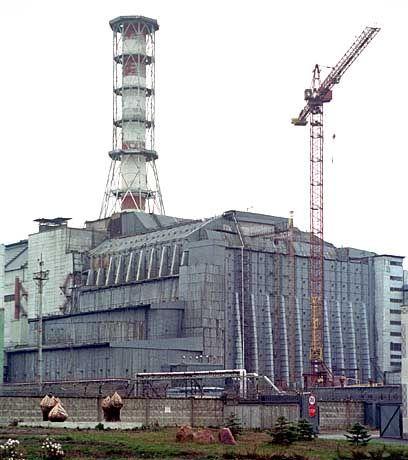 Der so genannte Sarkophag um den Reaktor 4 reicht nicht zum Schutz der Pflanzenwelt