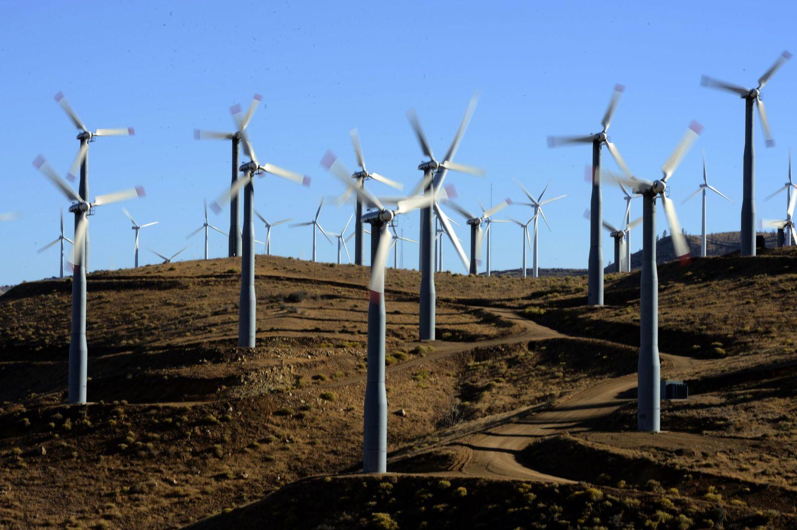 USA / Tehachapi Windpark