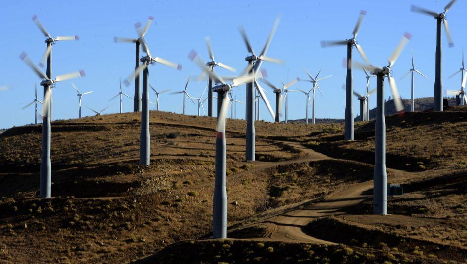 Windpark im US-Bundesstaat Kalifornien: Allianz investiert erstmals in den USA