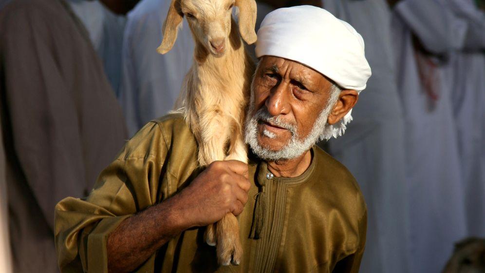 "Sultanat Oman: ""No Problem""-Land am Golf"
