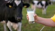 Greenpeace kritisiert EU-Kampagne für Fleisch und Milch