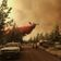 Zehntausende Menschen sollen sich wegen Waldbränden auf Evakuierung vorbereiten