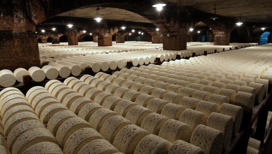 Roquefort-Käse im Südwesten Frankreichs: Die USA drohen damit, Zölle auf zahlreiche französische Importe zu erhöhen - darunter verschiedene Käsesorten