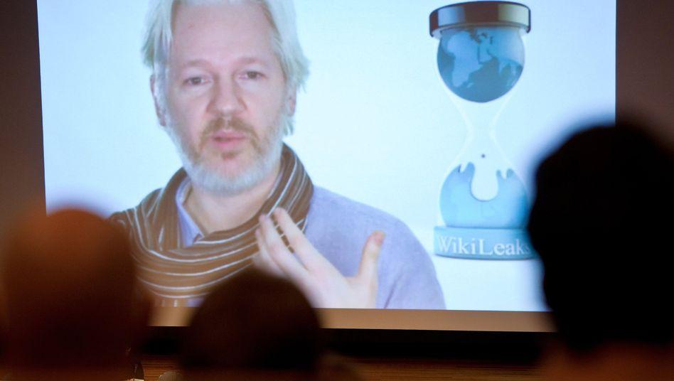Videoschalte mit Julian Assange: Verbindung mit Tonstörung