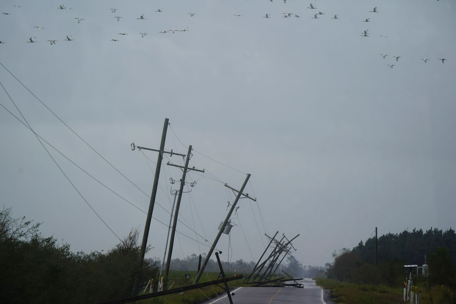 Downed power lines are seen after Hurricane Laura passed through the area in Creole