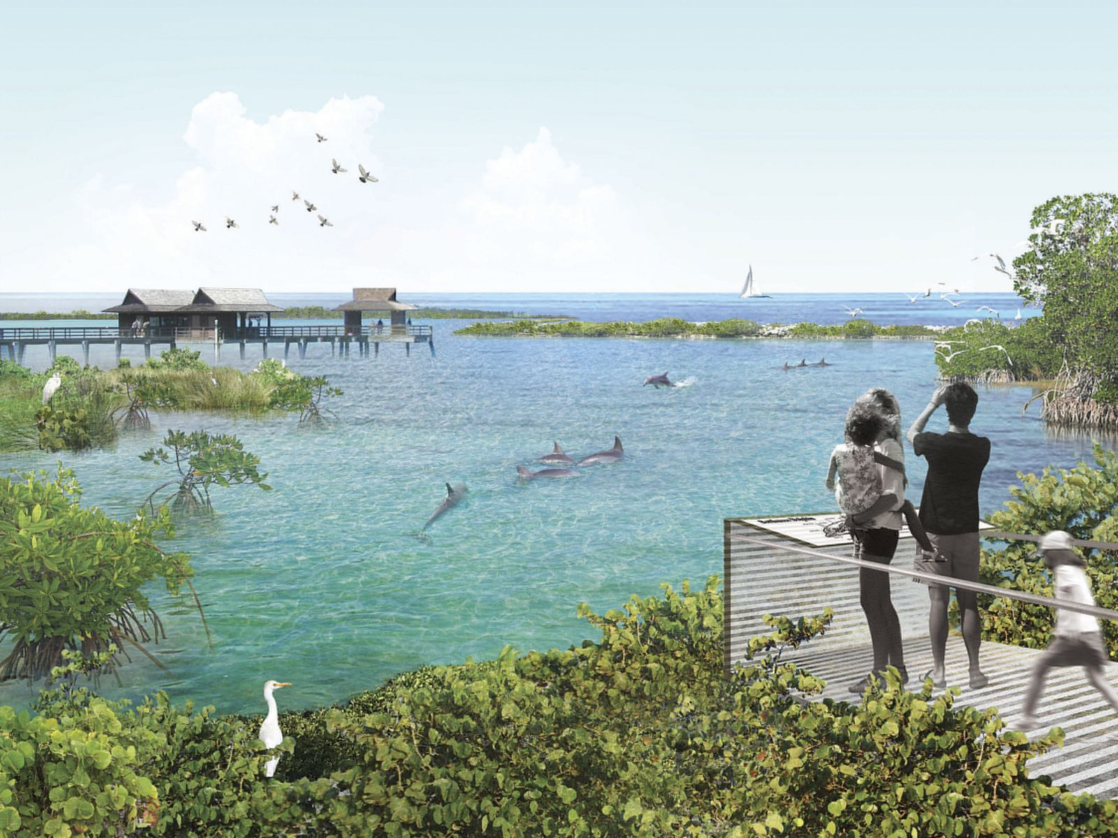 EINMALIGE VERWENDUNG Delfin-Freisetzungen aus Aquarien
