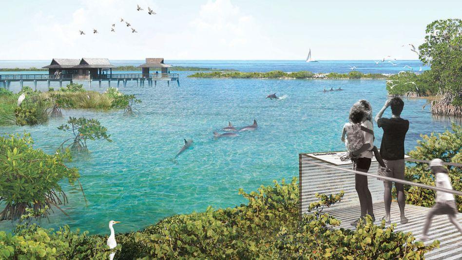 Neue Heimat für acht Delfine (künstlerische Darstellung)