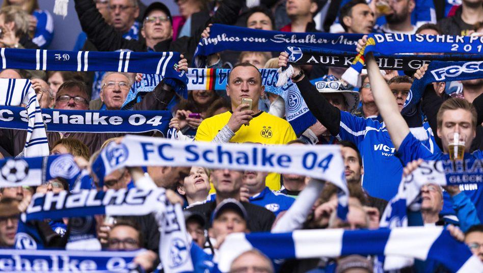 BVB-Fan unter Schalkern